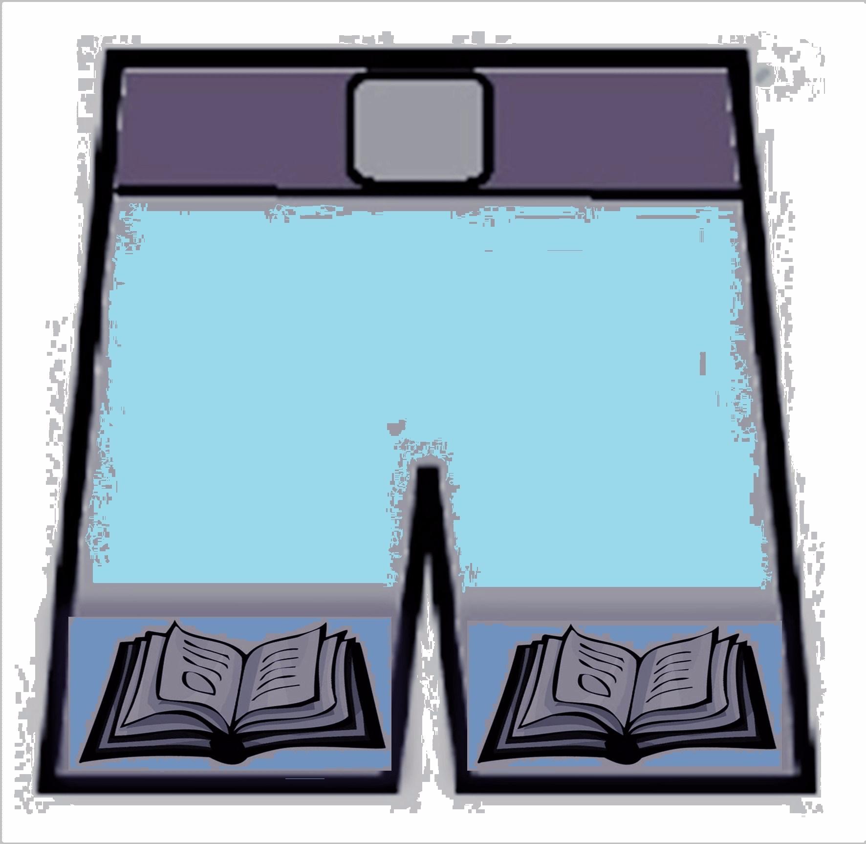 book shorts blue (2)