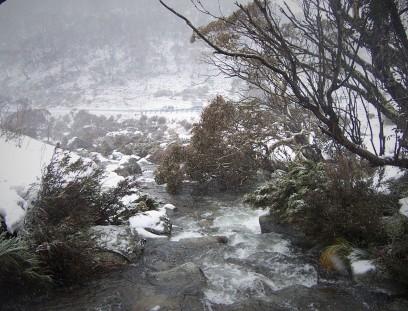snow thredbo creek