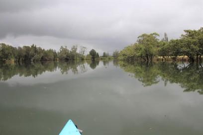 paddle creek