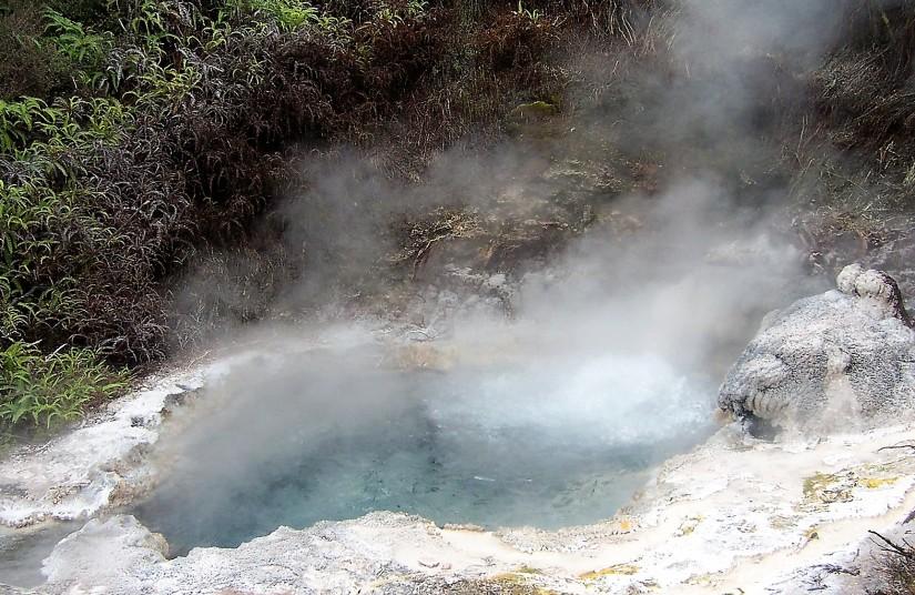 NZ 2005 - 173 (3)